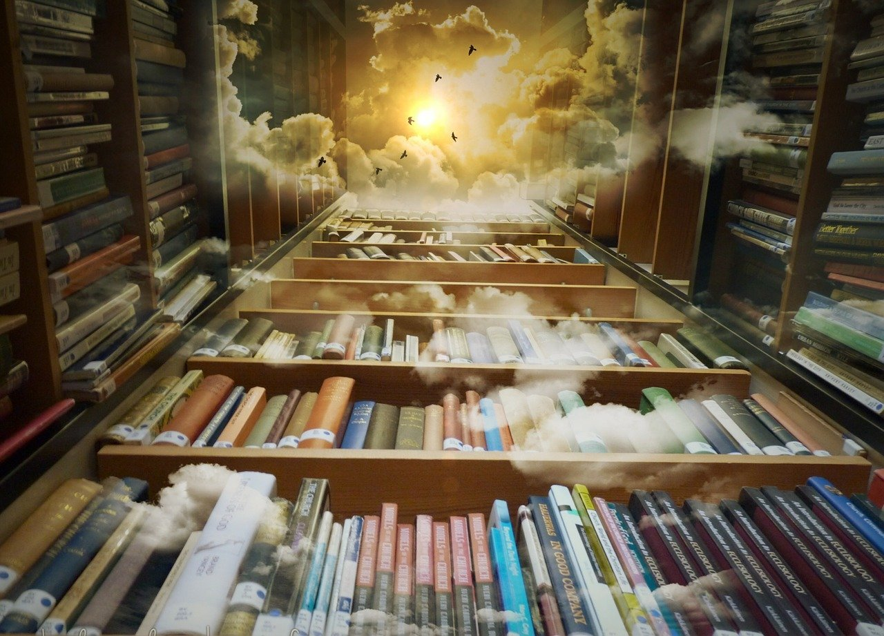 library, sky, birds